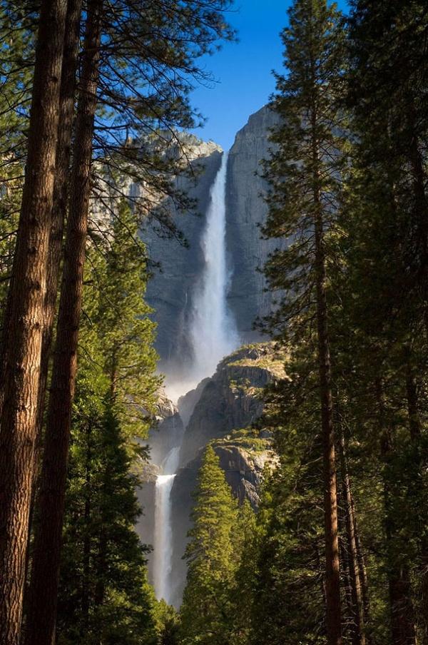Національний парк Йосеміті, Каліфорнія, США